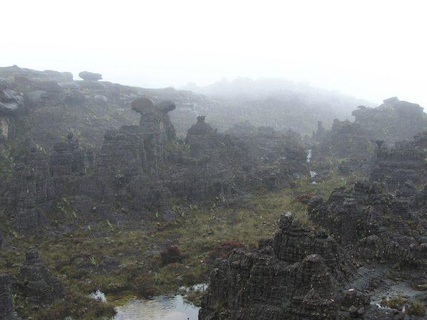 рорайма скалы