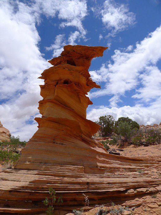 Койот Баттс каньон