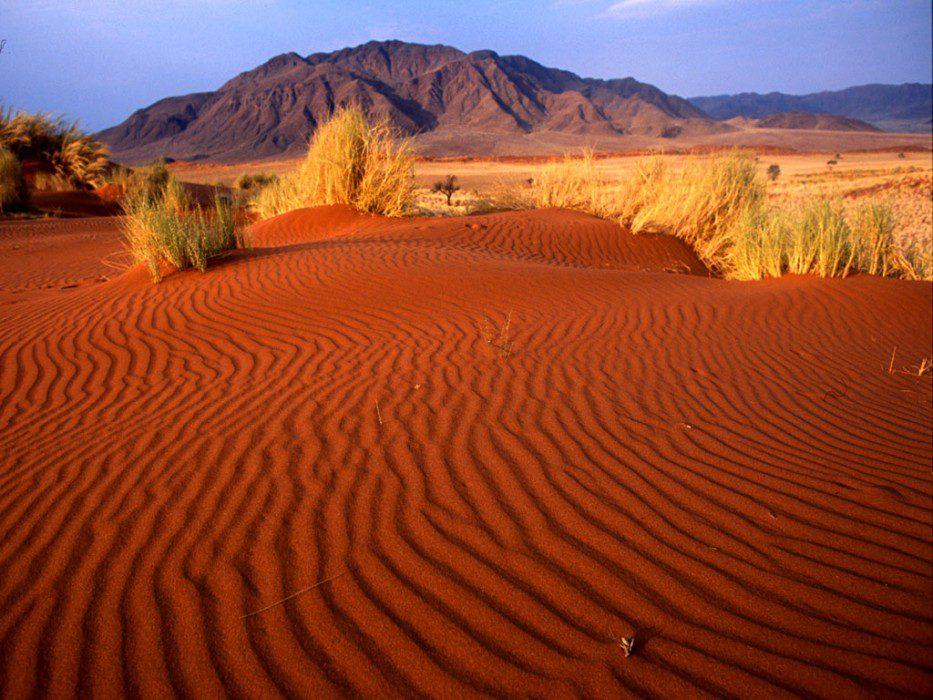 Калахари Африка фото