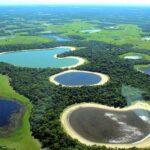 Пантанал — самая большая в мире заболоченная территория
