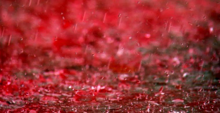 кровавый дождь в Индии