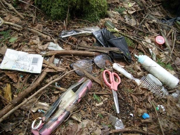 находки леса Аокигахара