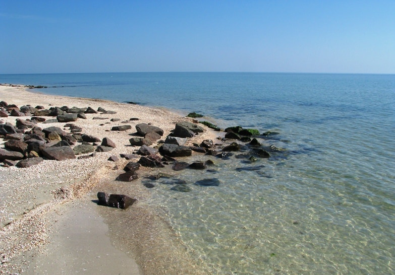 Бирючий остров фото