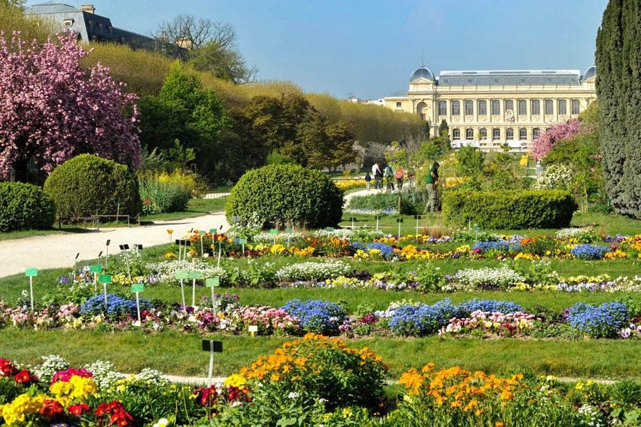 ботанический сад Парижа