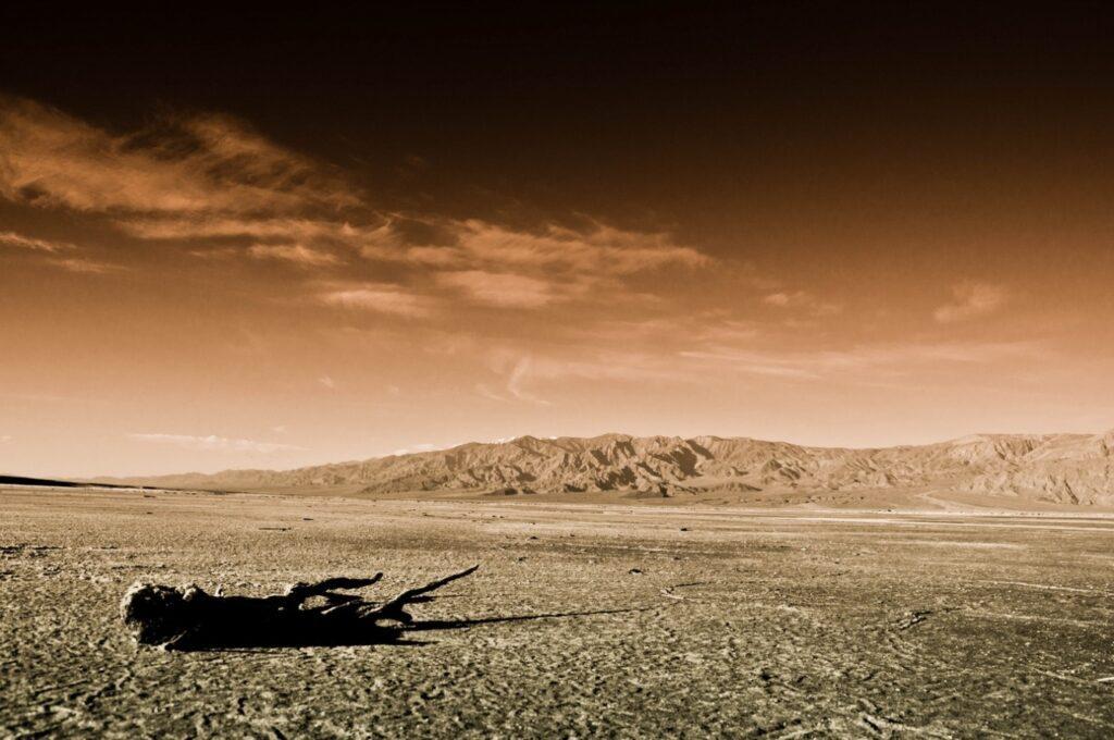 пустыня мохаве в США