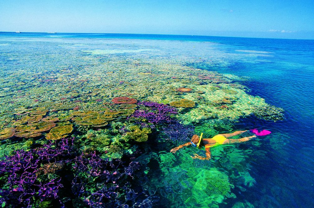Большой Барьерный риф Австралия фото