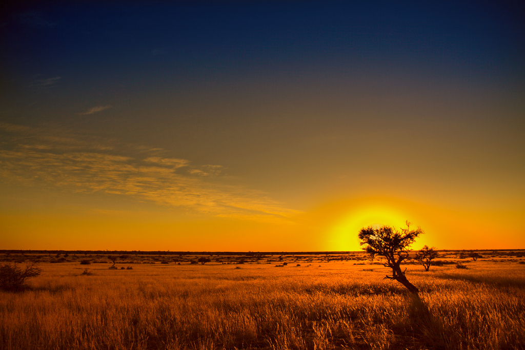 Пустыня Калахари Африка фото