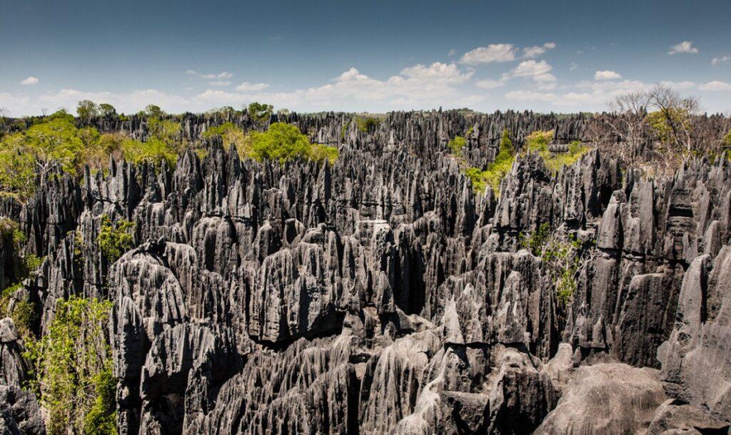 Цинжи-дю-Бемараха Мадагаскар