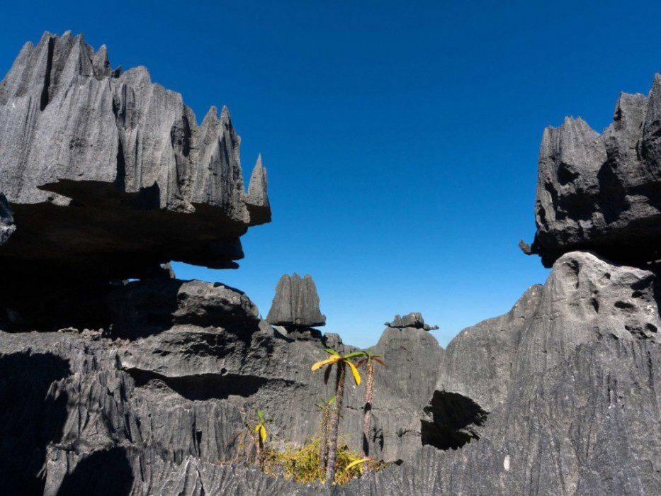 Цинжи-дю-Бемараха каменный лес