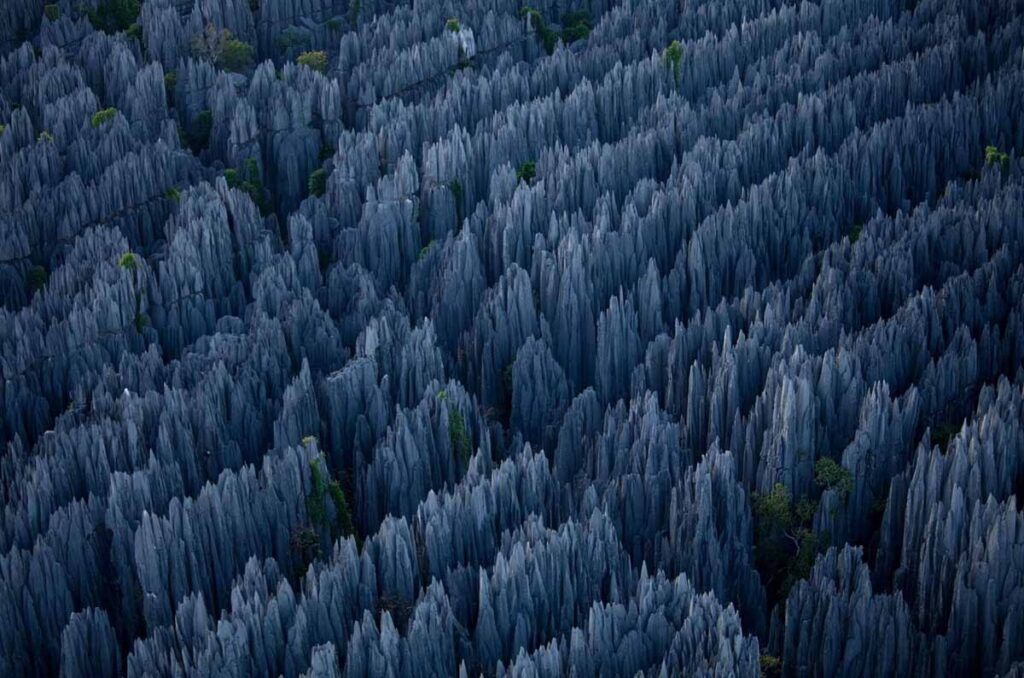 Цинжи-дю-Бемараха фото