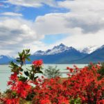 Национальный парк Лос-Гласьярес (Аргентина)