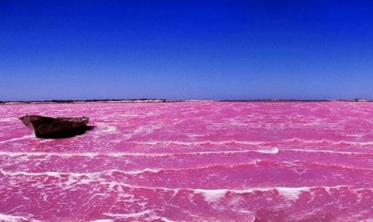 озеро Хиллер розовое