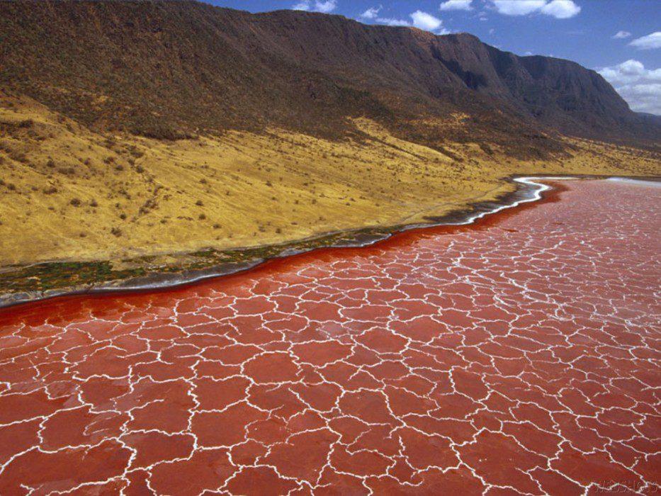 мертвое озеро Натрон