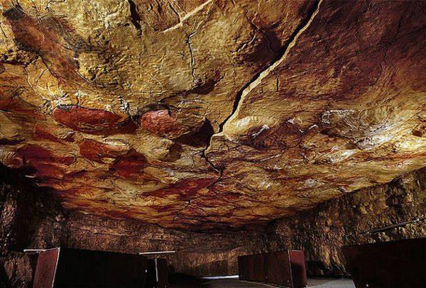 бизоны пещеры альтамира
