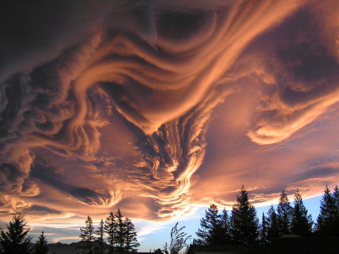 облака асператус фото