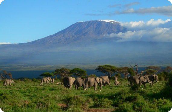 достопримечательности Кении фото