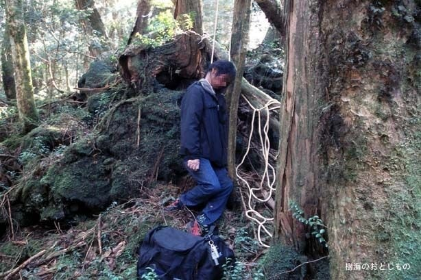 Аокигахара лес смерти
