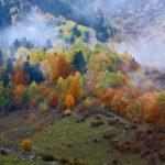 Преимущества осеннего отдыха в Карпатах