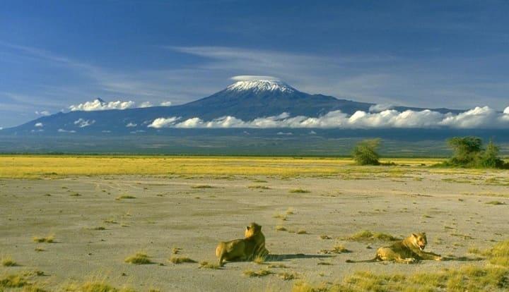 Килиманджаро Африка